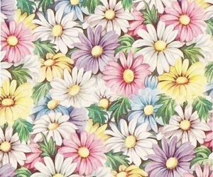 flowers, colorful, and floral image