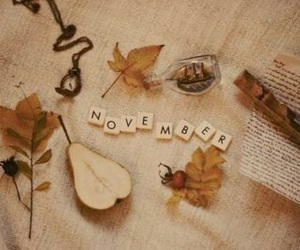 november, autumn, and leaves image