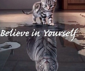 cat, Dream, and yourself image