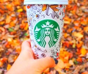 fall, starbucks, and autumn image