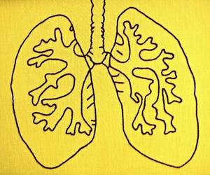 yellow, aesthetic, and lungs image