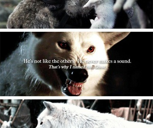 ghost, game of thrones, and jon snow image