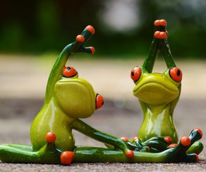 frog and yoga image