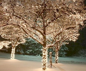 christmas, trees, and winter image