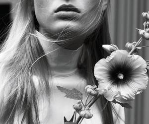 Image by DESTROYA