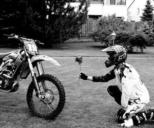 motocross and rose image