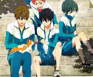 free!, anime, and asahi image
