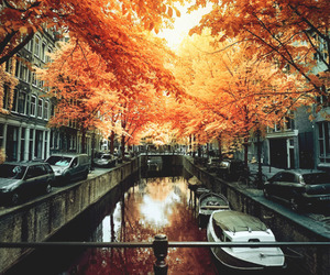 autumn, fall, and amsterdam image