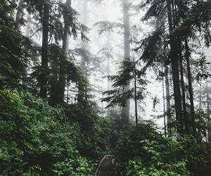 beautiful, dark, and enjoy image