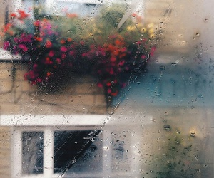 rain, flowers, and window image