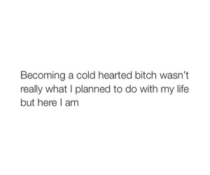 bitch, cold, and heart image