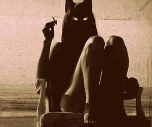 cat, cigarette, and black image