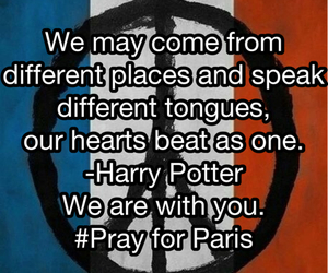 france, harry potter, and quote image