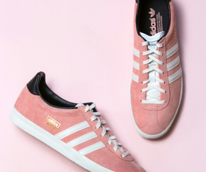 adidas and gazelle image