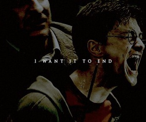harry potter, phoenix, and remus lupin image