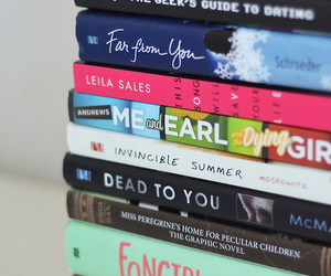 book and fangirl image