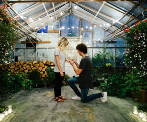 couple, lovely, and proposal image