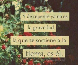 love, frases, and el image