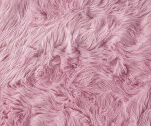 pink, fur, and wallpaper image