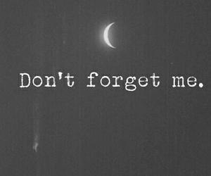 forget, moon, and quotes image