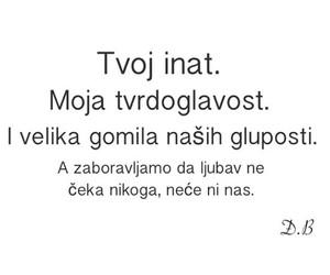 citati, inat, and ljubav image
