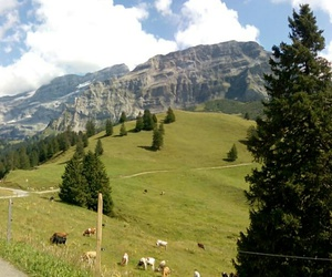 mountains, alpes, and suisse image