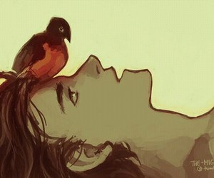 batman, beautiful, and bird image