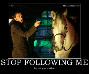 david tennant, doctor who, and horse image