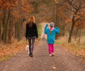 walk, autumn, and girl image
