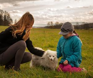 autumn, dog, and sister image