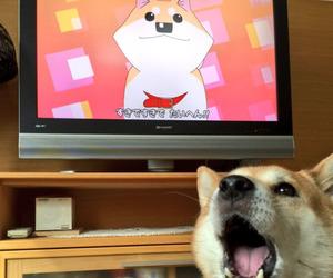 dog, cute, and anime image