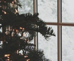 christmas, tumblr, and christmas tree image