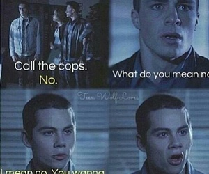 no, wolf, and teen wolf image