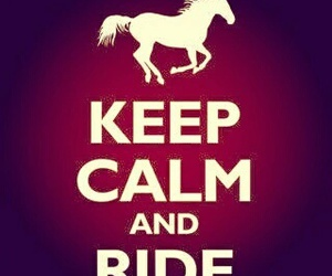 horse, keep calm, and riding image