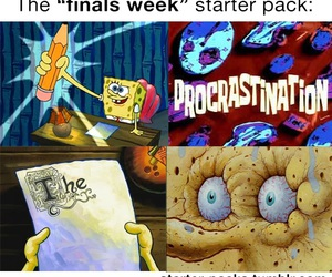 funny, exams, and finals image