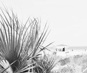 beach, sand, and black and white image
