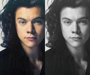 Harry Styles and haroldstyles image