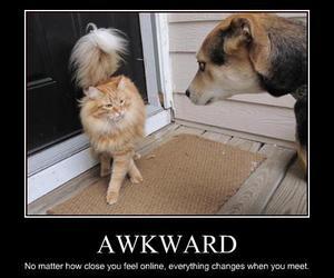 awkward, meeting, and funny image