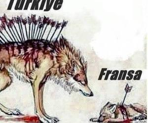 paris, turkey, and turkiye image