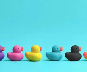 colors, ducks, and toys image