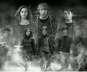 potter, trio, and harry image
