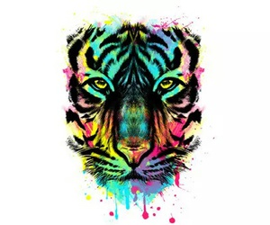 animal, art, and tiger image