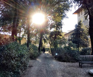 firenze, sole, and parco image