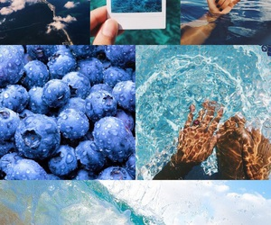 adventure, blue, and berries image