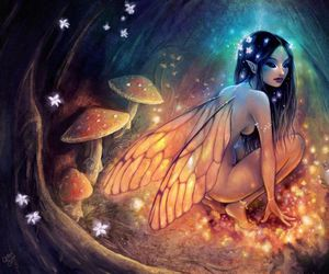 fairy and light image