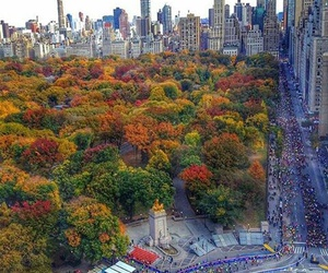 beautiful, Central Park, and fall image