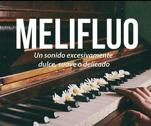 melifluo, sonido, and words image