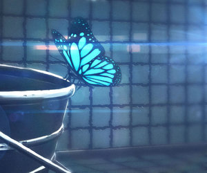 life is strange, butterfly, and blue image