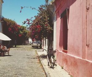 beauty, uruguay, and colonia image