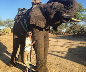 adventure, elephant, and south africa image